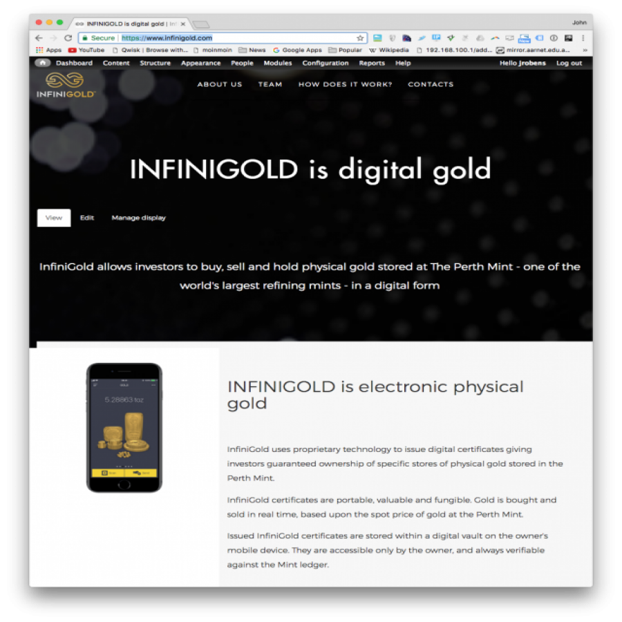 Infinigold website screen grab